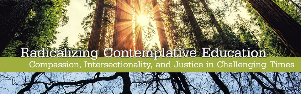 Radicalizing Contemplative Education